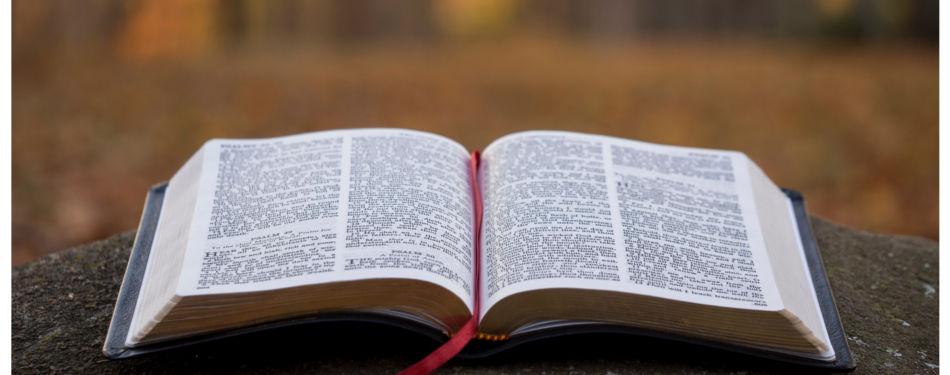 Taller de Biblia